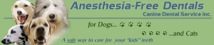 Canine Dental Clinic